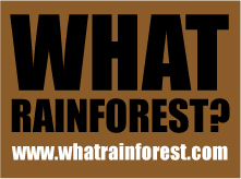 What Rainforest?
